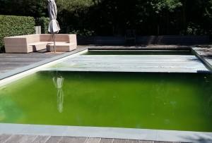 15ZwembadGroen 300x203 * Kwaliteit zwembadwater